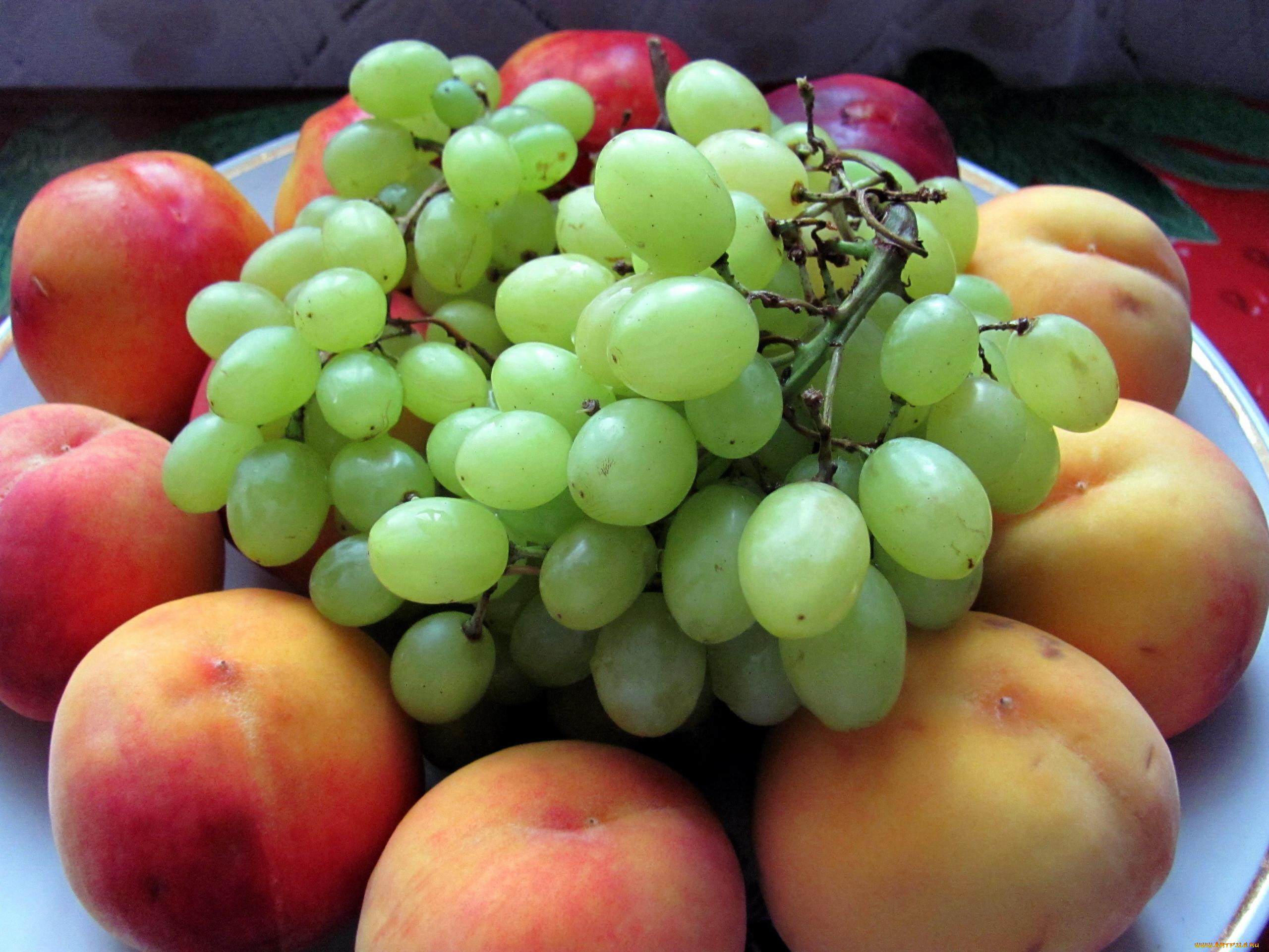 правом красивые картинки персики и виноград цветами